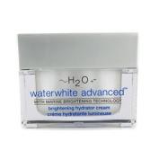 Waterwhite Advanced Brightening Hydrator Cream (New Packaging), 50ml/1.7oz